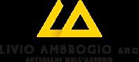 Livio Ambrogio